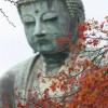 Kamakura Autumn
